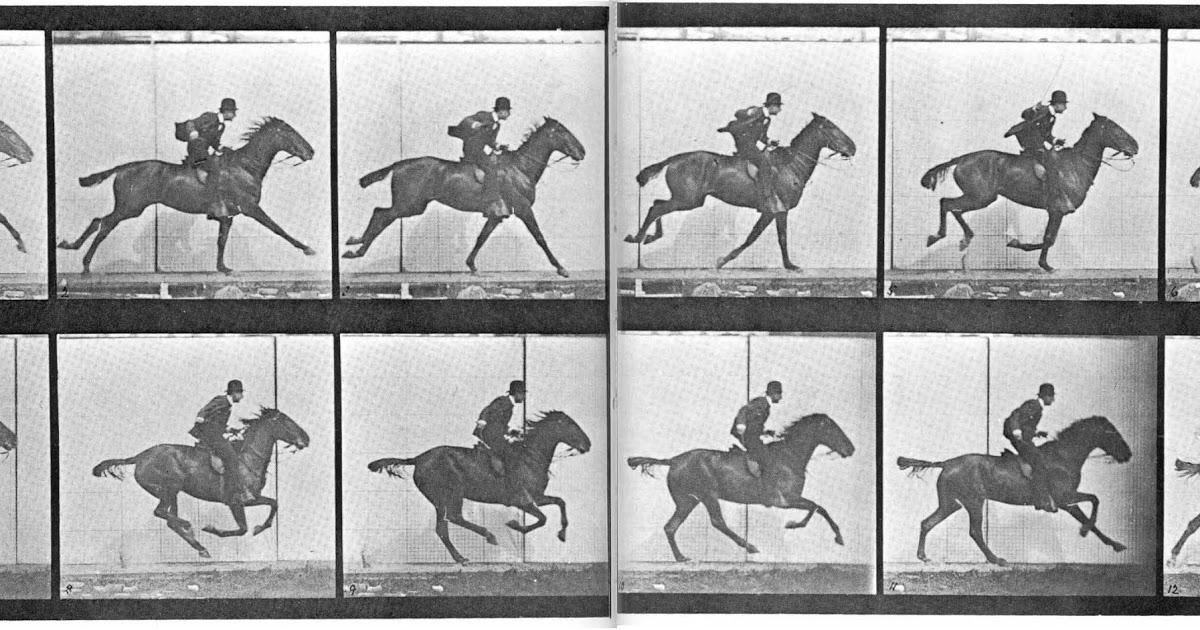 Galloping, GIFs and Genes: Geneticists Store Moving Image in Living Bacteria — Blog of the Long Now